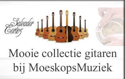 Klik voor gitaren bij Moeskops Muziek ..